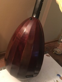 lute guitar bowl