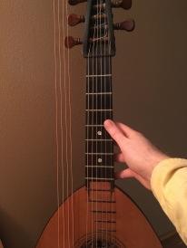 lute guitar fretboard
